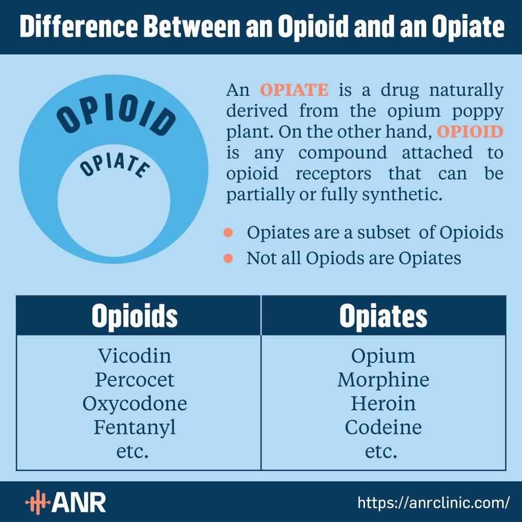 opioid vs opiate